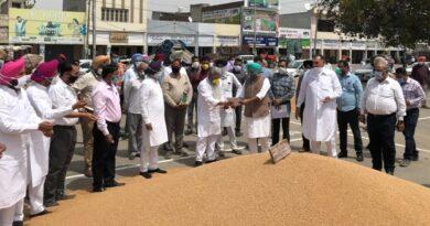 khanna Grain Market
